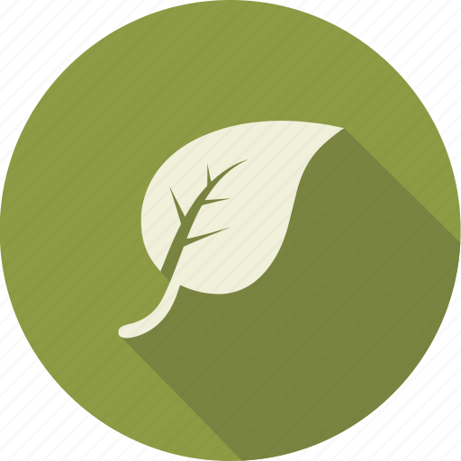 environnement, garden, green, leaf, leaves, nature, tree icon
