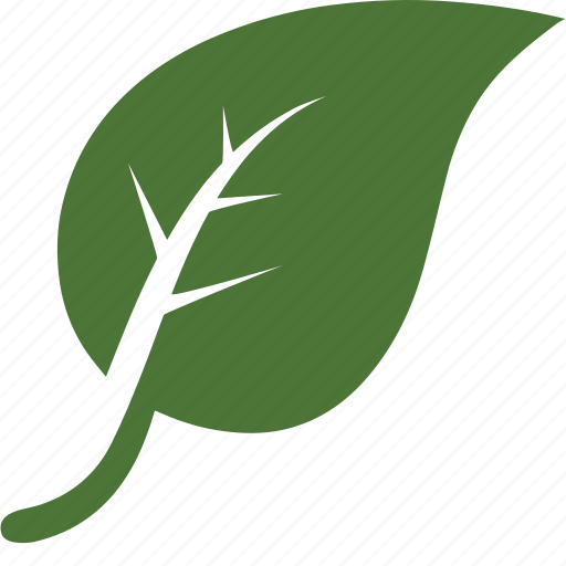 Environnement, garden, green, leaf, leaves, nature, tree icon - Download on Iconfinder
