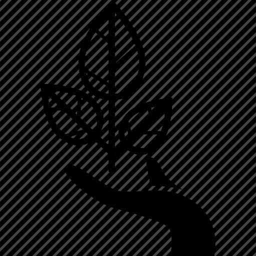 eco, environmental, plant, savetree, tree icon