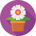ecology, floral, flower, flowerbed, garden, nature, plant icon