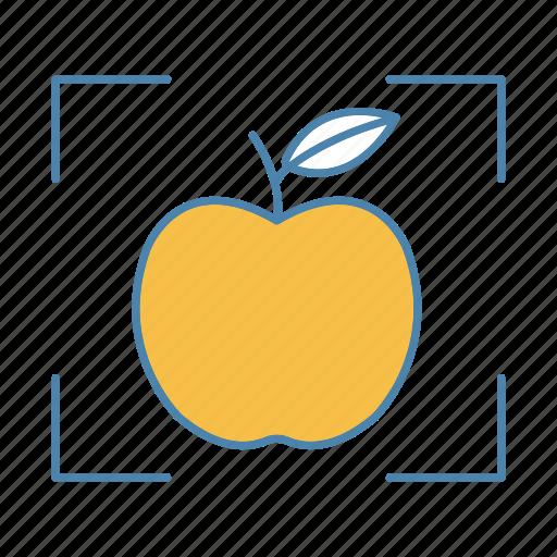 apple, detect, detection, focus, fruit, identification, scan icon