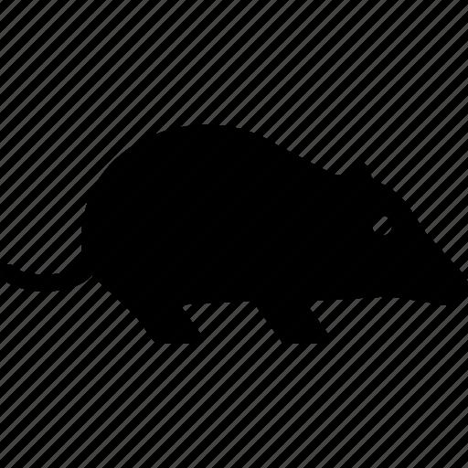 digger, mole, rat icon