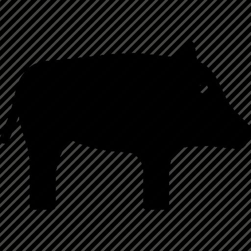 boar, hog, pig, wild icon