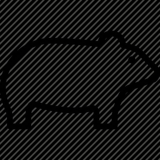 animal, chinchilla, rat, rodent icon