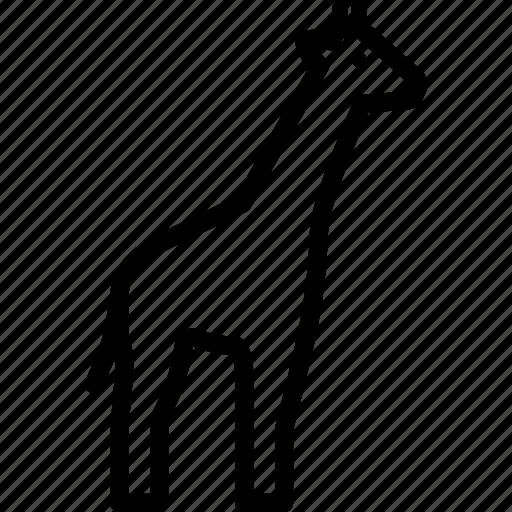 Giraffe, tallest, animal, african icon
