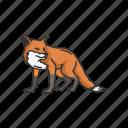animal, canine, fox, kit fox, mammal, red fox, reynard icon