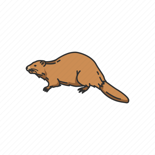 Animals, beaver, mammal, mountain beaver, rodent, semiaquatic rodent icon - Download on Iconfinder