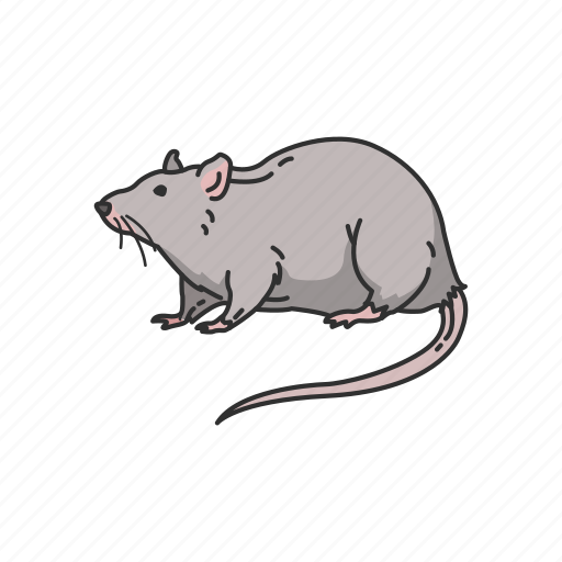 Animals, grey rat, mammal, mouse, rat, rodent icon - Download on Iconfinder