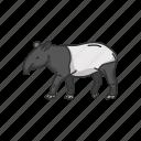 animals, herbivorous mammal, mammal, mountain tapir, pig-like, tapir