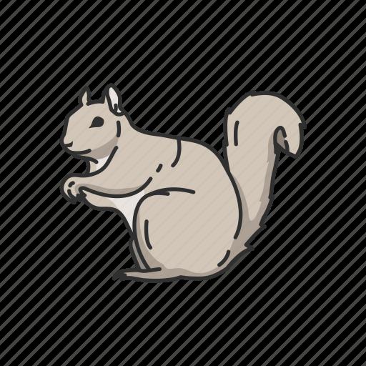 Animals, chipmunk, mammal, marmot, squirrel, tree squirrel icon - Download on Iconfinder