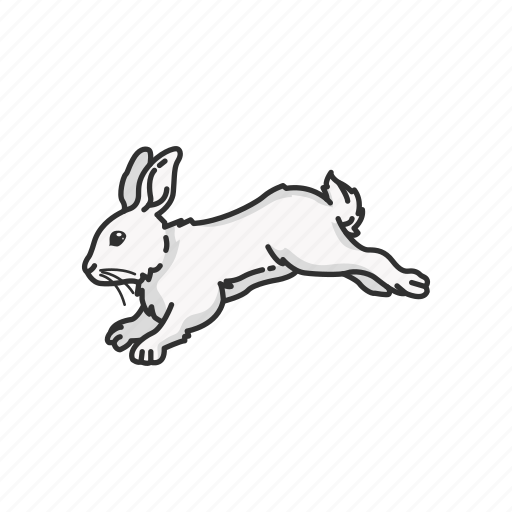 animal, bunny, easter bunny, hare, jack rabbit, mammal, rabbit icon