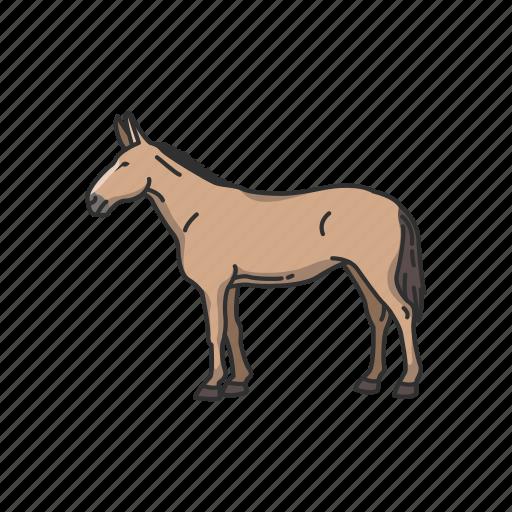 animals, domestic animal, donkey, horse, mammal, mule icon