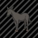 animals, donkey, horse, mammal, mule, warmbloods icon