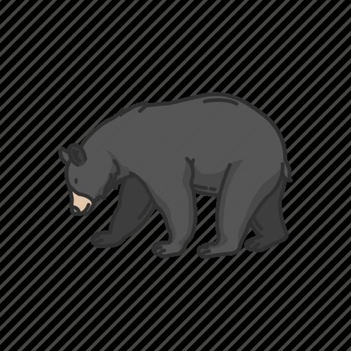 american bear, animal, bear, black bear, mammals, wild bear icon