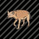 aardwolf, animals, feline, hyena, invertebrate, mammal, scavenger icon