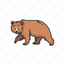 animals, bear, grizzly, kodiak bear, mammals, wild bear icon