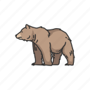 animal, bear, brown bear, grizzly, grizzly bear, mammal, wild bear icon