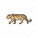 animal, big cat, feline, leopard, mammal, rosette, wild cat icon