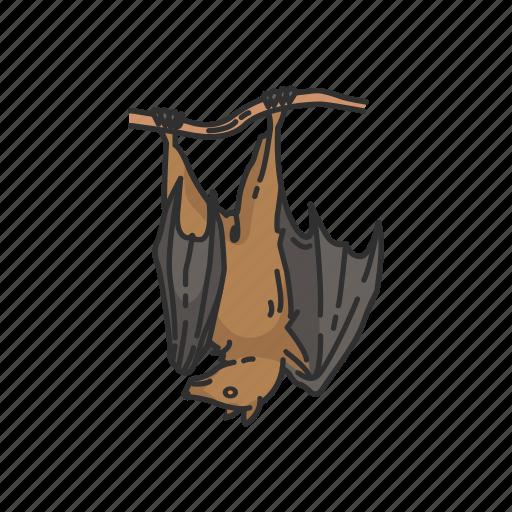 Animals, bat, bumblebee bat, flying fox, mammal, megabats icon - Download on Iconfinder
