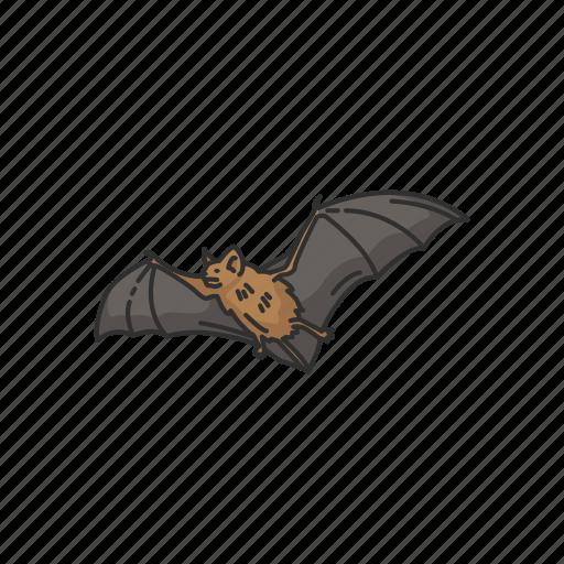 animals, bat, bumblebee bat, flying fox, mammal, megabats icon