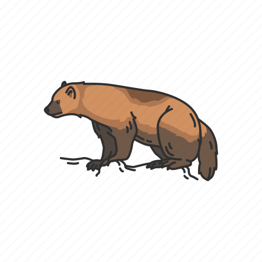 animal, bear, carcajou, mammal, wolverine, wolvorene icon