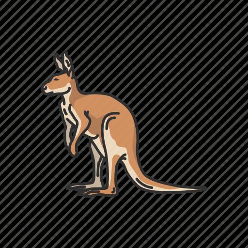 animals, female kangaroo, joey, kangaroo, mammals, wallaby icon