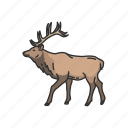 caribou, mammal, antler, reindeer, deer, animals, horned animal icon