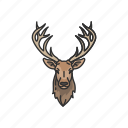 animals, bull moose, elk, mammal, moose, moose elk, moose head icon