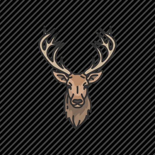 animals, bull moose, elk, mammal, moose, moose elk, moose head icon