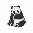 animals, bear, giant panda, mammal, panda, panda bear icon