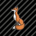 animal, canine, fox, kit fox, mammal, red fox, reynard