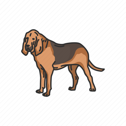 animals, bloodhound, canine, dog, hunting dog, mammal, pet icon