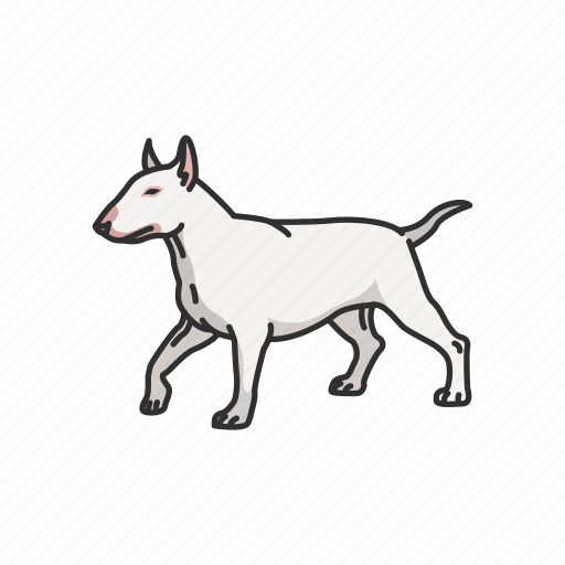 animals, bull terrier, dog, mammal, miniature bull trainer, pet, puppy icon