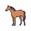 animals, draft horse, horse, mammal, mare, pony, stallion icon