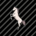 animals, dray horse, horse, mammal, mare, ponny, stallion