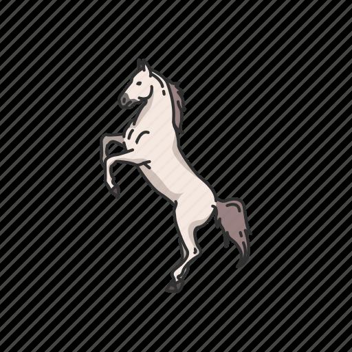 Animals, dray horse, horse, mammal, mare, ponny, stallion icon - Download on Iconfinder