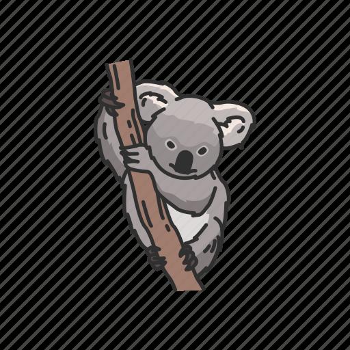 animals, arboreal animal, koala, koala bear, mammal, marsupial, wombat icon