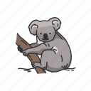 animals, arboreal animal, koala, koala bear, mammal, marsupial, wombat icon