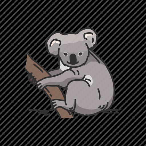 Animals, arboreal animal, koala, koala bear, mammal, marsupial, wombat icon - Download on Iconfinder