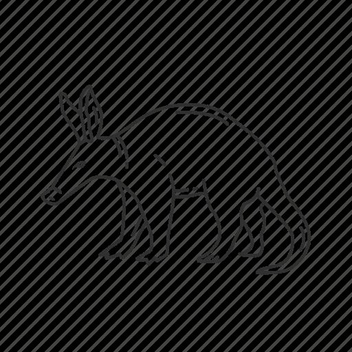 aardvark, african ant bear, anteater, medium land mammal, orycteropodidae family icon