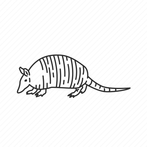 armadillo, chlamyphoridae family, dasypodidae family, leathery armour shell, medium land mammal icon