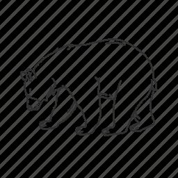 american black bear, bear, black bear, large land mammal, ursidae family, ursus americanus icon