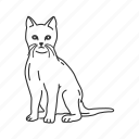 cat, domestic cat, felidae family, feline, felis catus, house cat, small land mammal icon