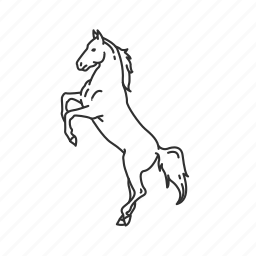 equidae family, equus ferus caballus, horse, large land mammal, mare, pony icon