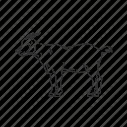 billies, bovidae family, capra aegagrus hircus, domestic goat, goat, medium land mammal, nannies icon