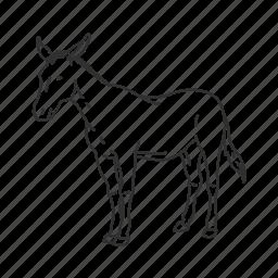 ass, donkey, equidae family, equus africanus asinus, jack, medium land mammal icon