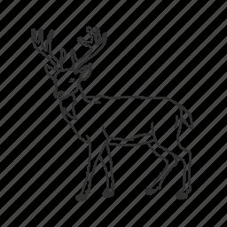 buck, cervidae family, deer, deer antlers, medium land animal icon