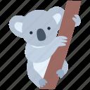 animal, australia, bear, herbivore, koala, mammal, marsupial icon