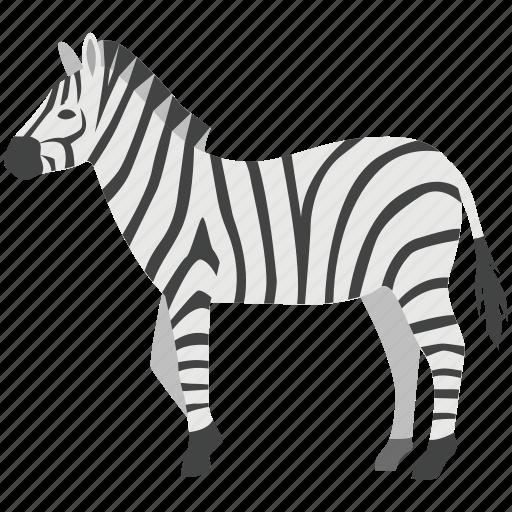 African, horse, plains, safari, striped, stripey, zebra icon - Download on Iconfinder