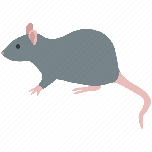 brown, extermination, invasive, mouse, pest, rat, rodent icon